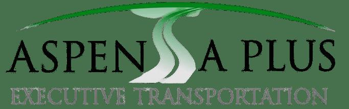 limousine service logo